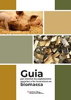 Guia Biomassa.png