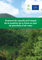 Protocol_de_classificació_visual_en_peu