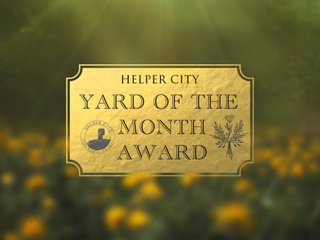 Yard of the Month Award!