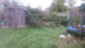 Back Garden Before.jpg