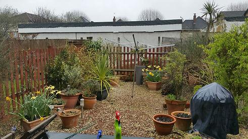 Back Garden Before 2.jpg