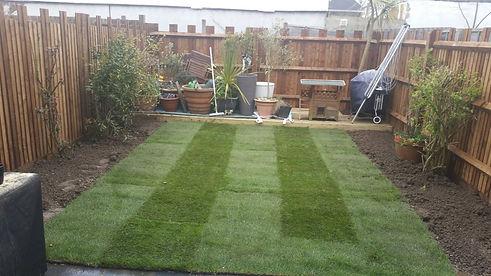 Back Garden After 2.jpg