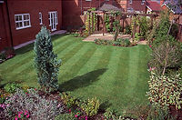 Garden Maintenence Ruislip.jpg