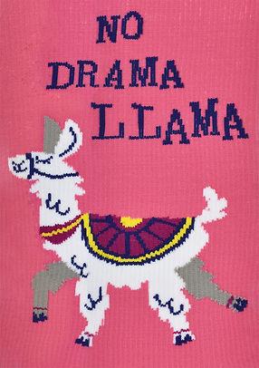 dramallama-front.jpg