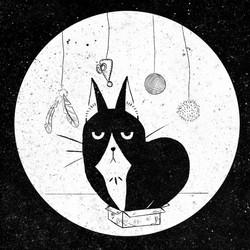 Cat's Diary