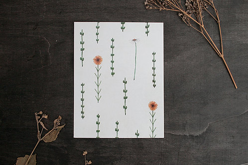 Botanical Flowers 4x5 Inches Print