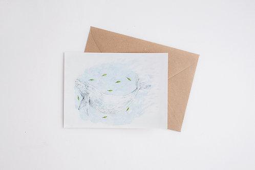 Blue Whale 4x6 Inches Print