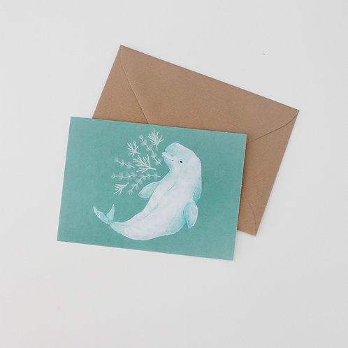 Beau - Beluga Whale Art Print