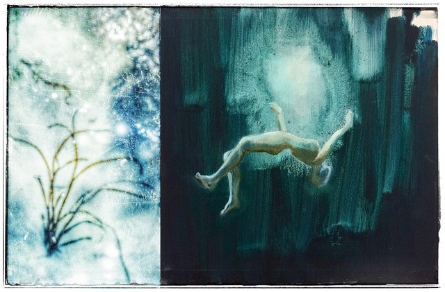 Annabelle JOUSSAUME et Frédérique BOUET  n°50 « série les aquatiques 1 »