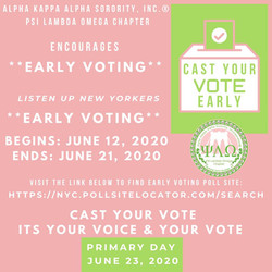 PLO Voting Campaign 2020