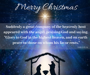 "Suddenly a great company of the heavenly host appeared with the angel, praising God and saying, ""Glory to God in the highest  heaven, and on earth peace to those on whom his favor rests."" Luke 2:13-14"