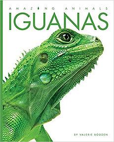 Amazing Animals books, Bison, Chameleons, Crabs, Crocodiles, Frogs, Giraffes, Iguanas, Jaguars, Jellyish, Koalas, Komodo Dragons, Lions, Meerkats, Monkeys, Owls, Pandas, Parrots, Peacocks, Penguins, Polar Bears, Rays, Rhinoceoses, Sharks, Skunks, Sloths, Snakes, Snow Leopards, Swans, Tigers, Walruses