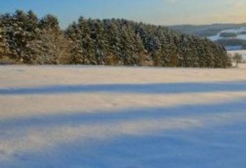 snowtest.jpg