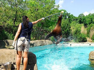 kesha and maggie jump.jpg