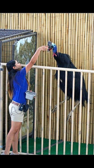 Stephanie Gonzalez gives an educational demonstration with a cassowary.