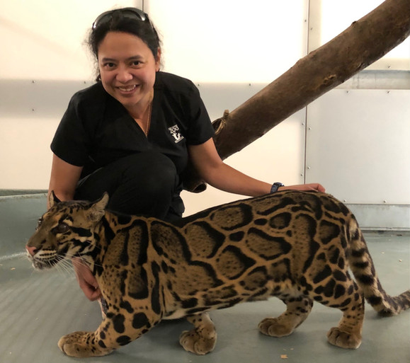Margrita Woc Colburn with a clouded leopard.