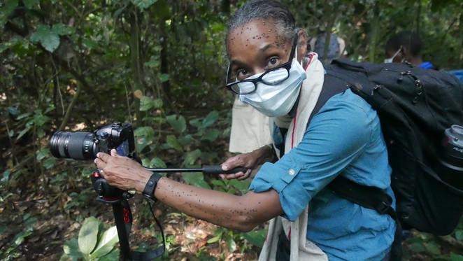 Natalie Cash filming gorillas in Mondika.