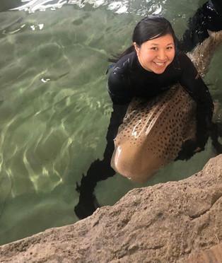 Jessica Nishimoto with a zebra shark.