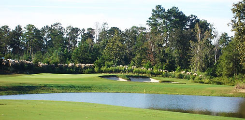 carter plantation golf course