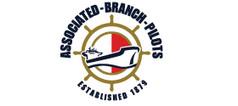 branch_pilots_logo.jpg