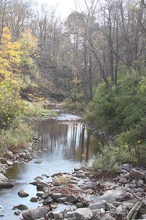 Tom's Run Creek