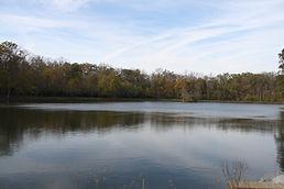 Swinging Bridge Lake (12 acre pond)