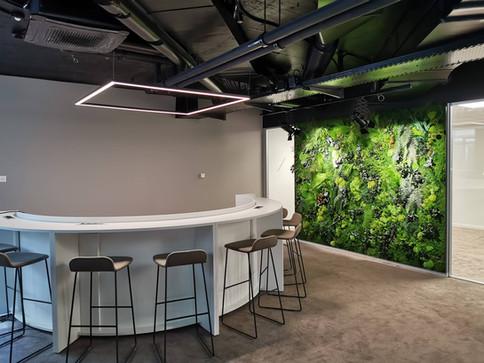Mur végétal naturel stabilisé Elegance