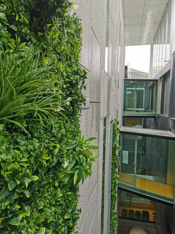 Mur végétal artificiel en extérieur