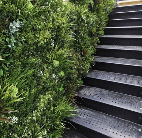 mur_vegetal_escalier.jpg