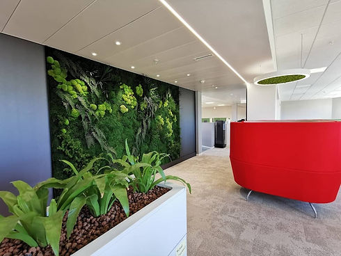 Mur végétal dans un open space