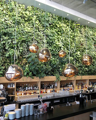 decoration_interieure_vegetale.jpg