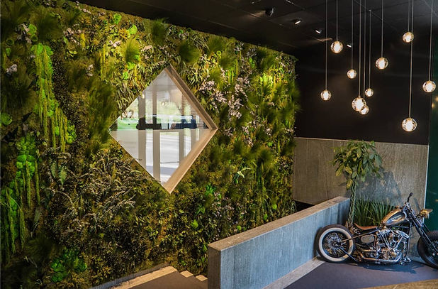 Mur végétal effet jungle
