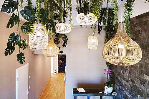 plantes plafond suspensions végétales