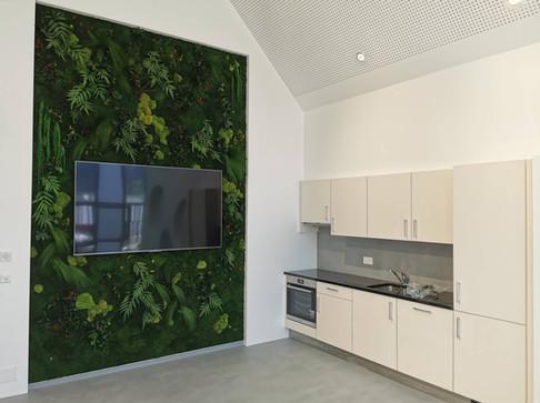 Mur végétal naturel stabilisé Elegance dans une cuisine