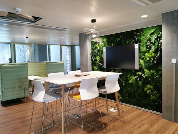 Mur végétal naturel stabilisé Elegance dans des bureaux