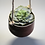 Thumbnail: Stoneware Shino Brown Hanging Plant Pot