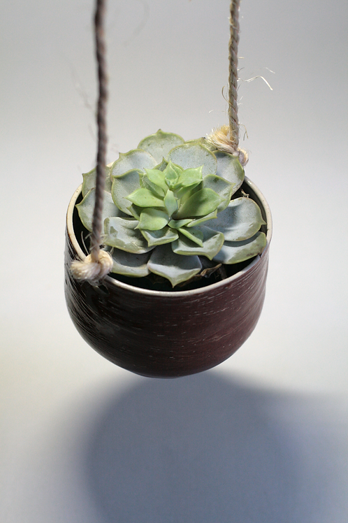 Stoneware Shino Brown Hanging Plant Pot