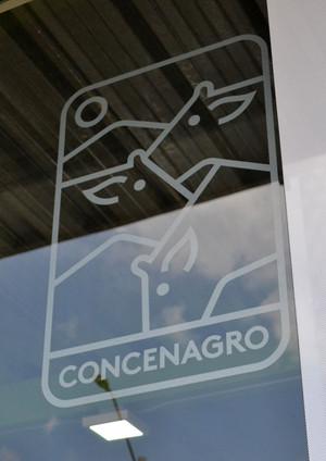 concen7.jpg