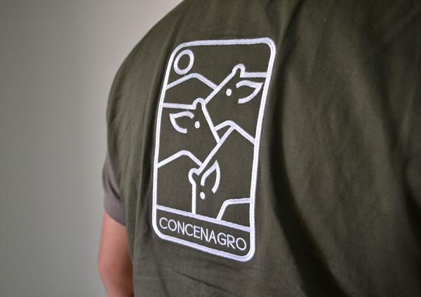 concen8.jpg