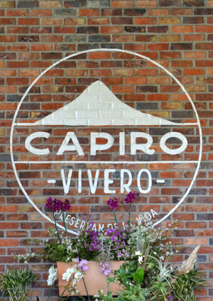capiro8.jpg
