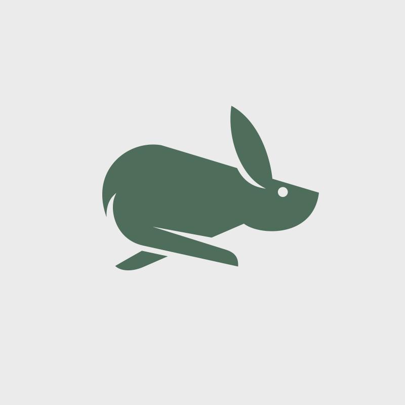 ping-rabbit.png