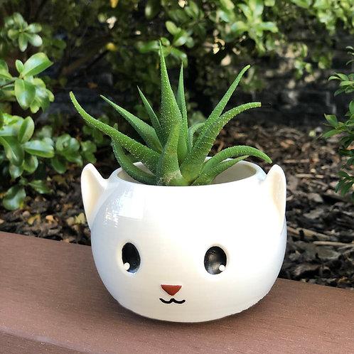 Meow Planter