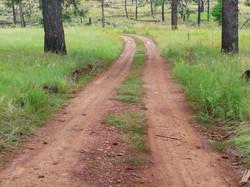 Woodlin Trail
