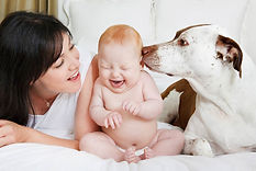 New baby and pet introduction support by Christine Duarte, postpartum doula