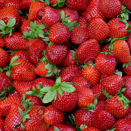 Strawberries by the Peck