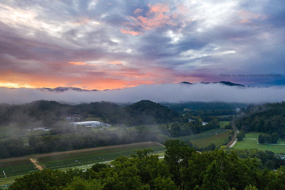 Aerial view of Shelton Farms Whittier NC