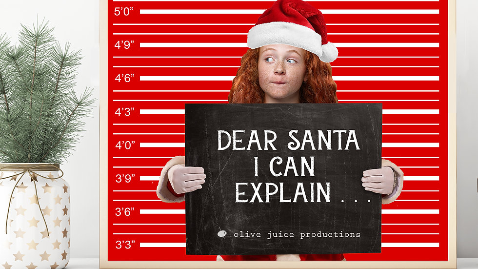 DEAR SANTA- I CAN EXPLAIN