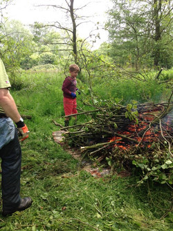 woodland clearance with Ryan c