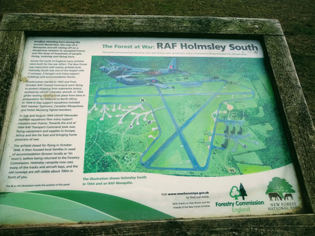 History at Holmsley,  New Forest
