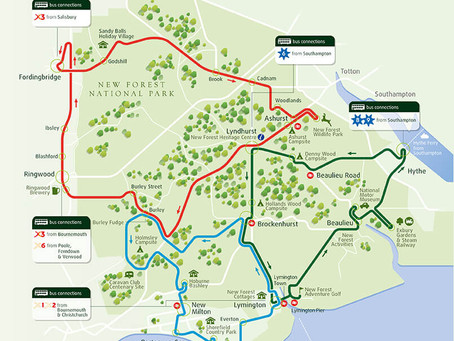 New Forest Sightseeing Tour Bus Resumes